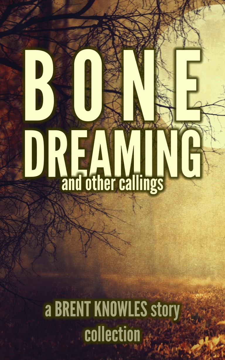 cover for Bone Dreaming and Other Callings